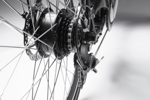 Kæde Pro Wood El ladcykel Dreambikes